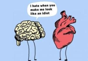Brain-and-heart